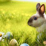 Lotto: Millionen-Jackpot als Überraschung zu Ostern