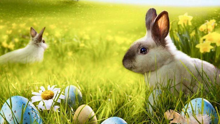 Lotto: Jackpot als Überraschung zu Ostern 2021